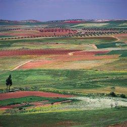 Campo Montiel en Castilla-La Mancha