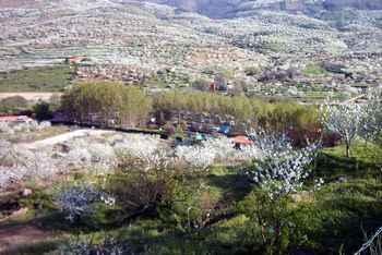 Camping Y Bungalows Rio Jerte em Navaconcejo (Cáceres)