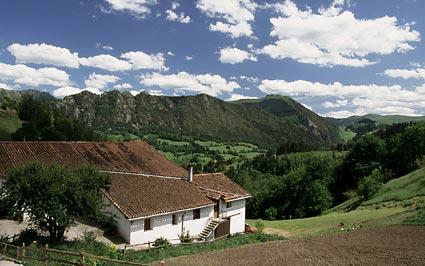 Aldarreta en ATAUN (Guipúzcoa)